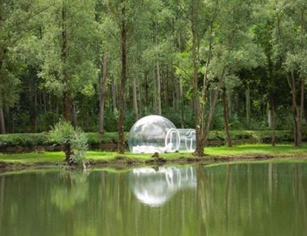 bubble tent tree 2 | Supplier of Carcapsule,Airship,Inflatable in China